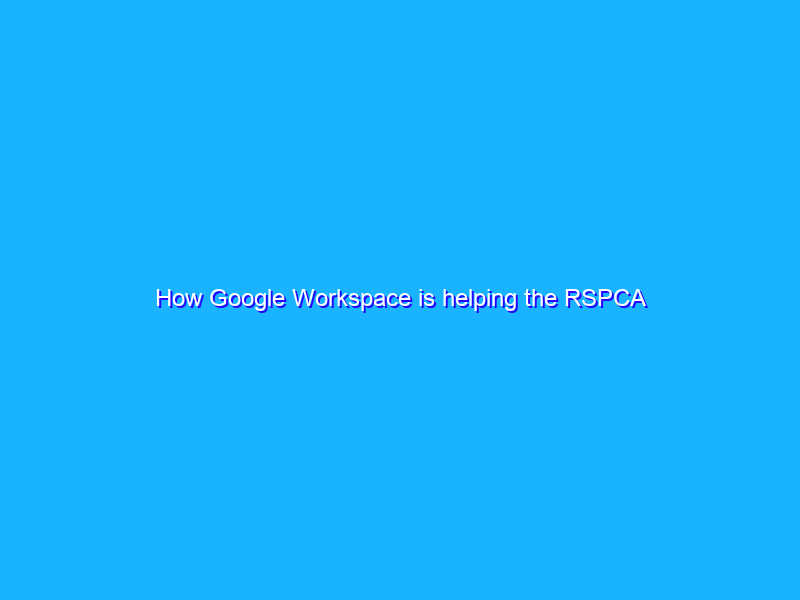 How Google Workspace is helping the RSPCA